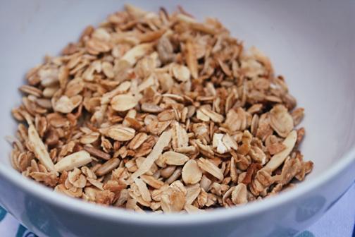 Domata Gluten Free Almond Coconut Granola lowres